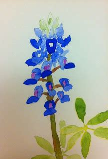 texas hill country art   paint  bluebonnet