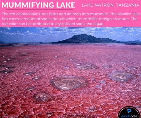Amazing Natural Phenomena Rare Unbelievable Pundit
