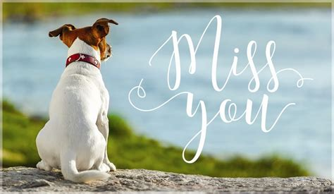Simply subscribe to download all 8 miss you cards for kids! Free Miss You eCard - eMail Free Personalized Miss You Cards Online