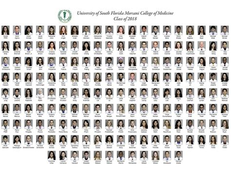 class pages composites usf health