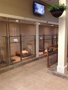 17 best images about boarding kennel ideas on pinterest for Red barn dog kennel