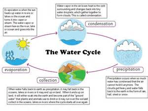 Water Cycle with Description