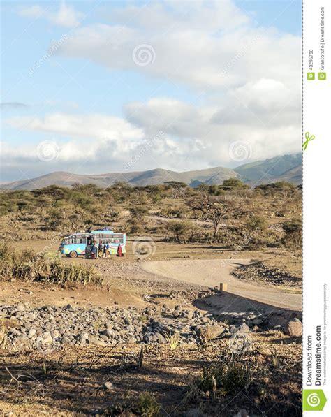 Dry Acacias In The Serengeti Editorial Stock Photo Image