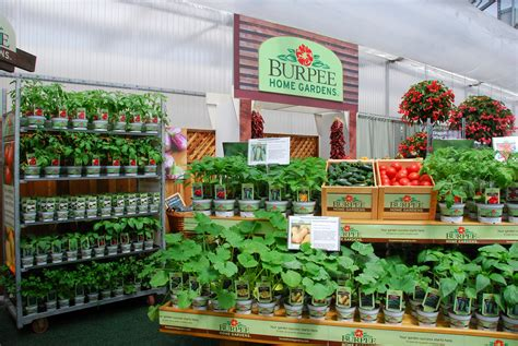 garden design with ready to plant vegetables by burpee