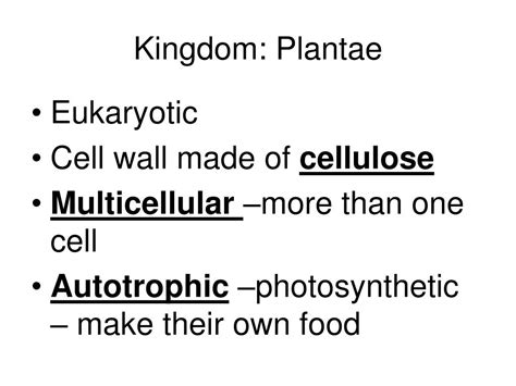 kingdoms domains phyla ppt powerpoint presentation eukaryotic multicellular
