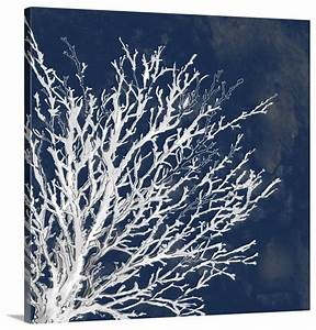 Coastal coral ii in blue wall art from great big canvas