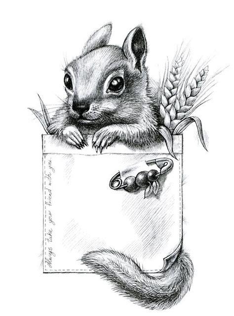 hedgehog    animals drawing