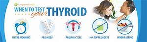 Update  Testing Your Thyroid And The Definitive Guide To