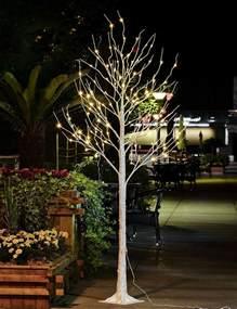 outdoor 4ft 6ft 8ft birch twig tree pre lit