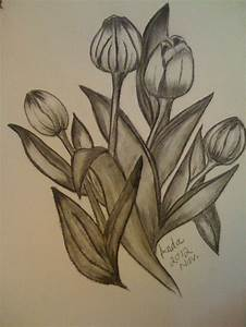Tulip Flowers i used (Charcoal & Pencil) A3 size | My ...