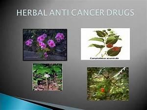 Anticancer Drugs Of Herbal Origin