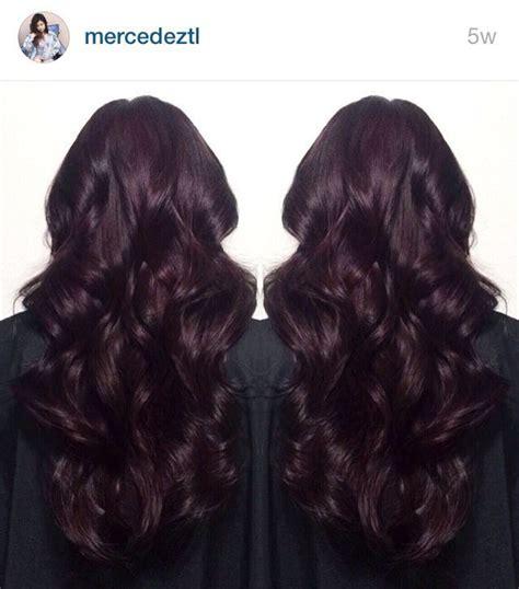 dark burgundy midnight ruby hair plum hair hair color