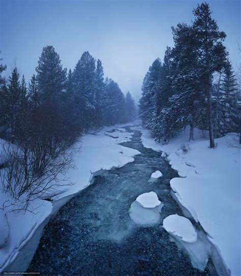 Download Wallpaper Winter, River, Trees, Landscape Free