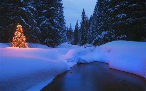 Landscape, Winter, Trees, Snow, Christmas, River, Night