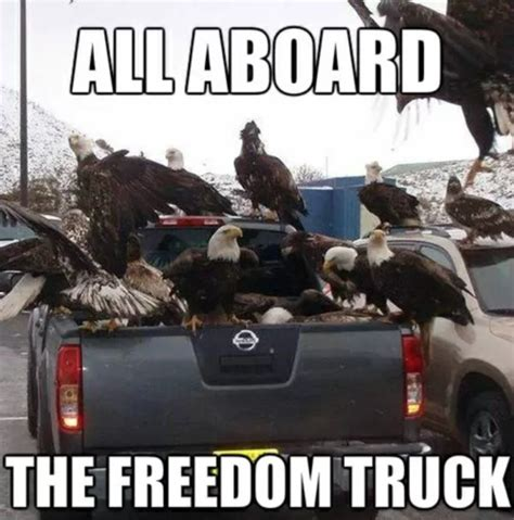 America Fuck Yeah Meme - freedom memes patriotic america fuck yeah photos captions thechive com thechive