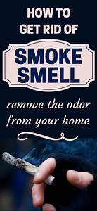 1047 best house cleaning images on pinterest cleaning With how to get rid of odors in house