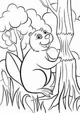 Beaver Coloring Pages Animals из все категории раскраски sketch template