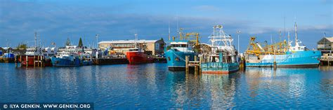 Perth Australia Fishing Boat by Fishermans Boats In Success Boat Harbour Fremantle