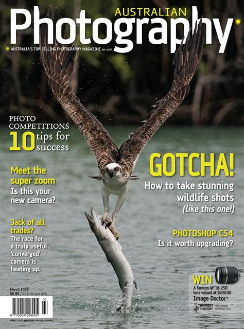 Covers  Michael Snedic  Wildlife And Nature Photographer