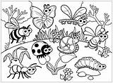 Insects Coloring Bugs Printable Children Again Bar Looking Case Don sketch template