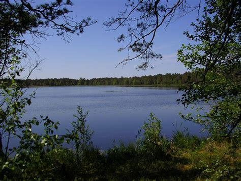 endla naturschutzgebiet wikipedia