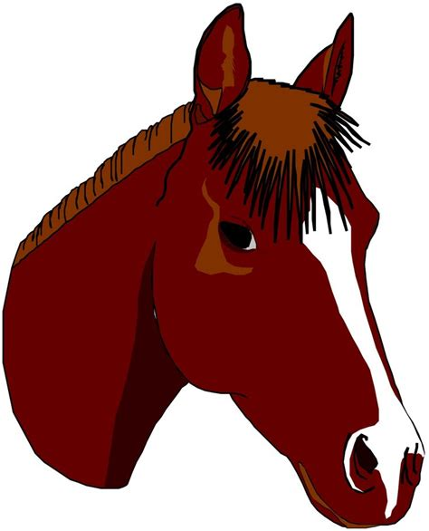 pretty horse drawable cool pictures pinterest