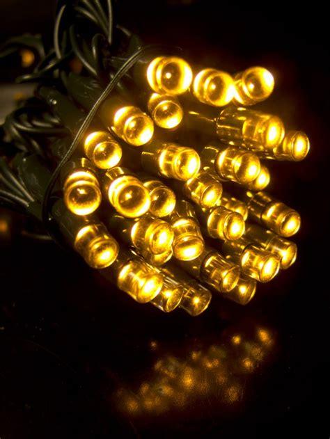 warm white led string light  christmas lights