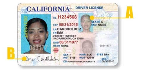 What Your Ca Driver's License Looks Like  California Dmv Practice Test