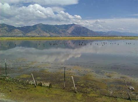 bear river migratory bird refuge brigham city
