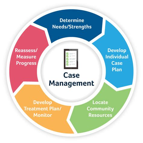 juvenile justice case management fei systems health