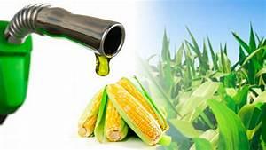 Sin beneficios claros el etanol en gasolinas: AMIA Zafranet