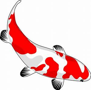 Koi De 9 En Israel : kostenlose vektorgrafik fisch koi rot wei nishikigoi kostenloses bild auf pixabay 159327 ~ Medecine-chirurgie-esthetiques.com Avis de Voitures