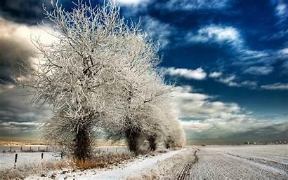 Winter Desktop Landscape Tree Wallpapers Snow Nature