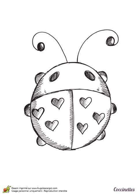 dessin  colorier dun croquis de coccinelle