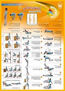 Corrective Exercise (Lordosis ) | Fitness: core exercises ...