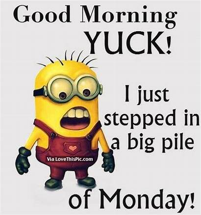 Morning Monday Funny Wednesday Quotes Pile Stepped