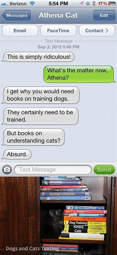 Text Cat Understand Cats Never Books Dogs