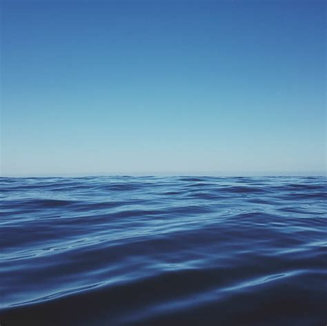 meaning  symbolism   word sea