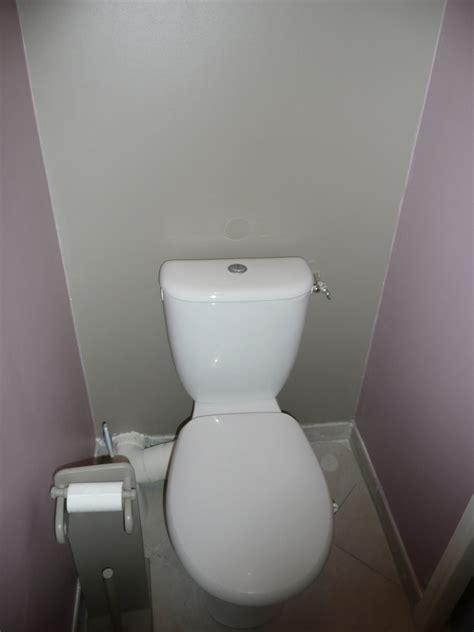 peinture pour toilette maison design goflah