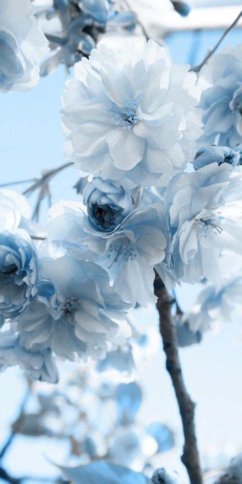 wallpaper aesthetic pastel blue 16 ideas