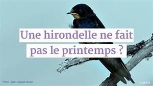 Une Hirondelle Fait Le Printemps : une hirondelle ne fait pas le printemps prsq 2015 ~ Melissatoandfro.com Idées de Décoration