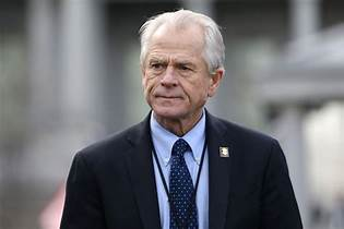 Peter navarro tossed off CNN interview