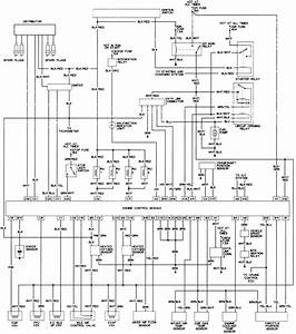 Toyota T100 Fuse Schematics  Toyota  Free Engine Image For