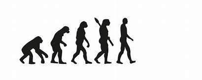 Evolution Algorithms Genetic Market