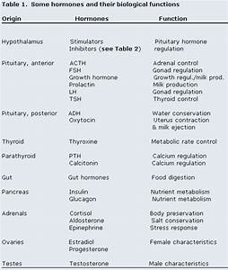 Endocrine System Table- Hormones And Organs
