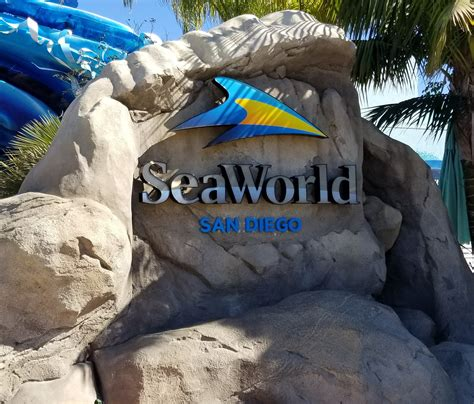 Seaworld San Diego Part Shows Attractions Aviously