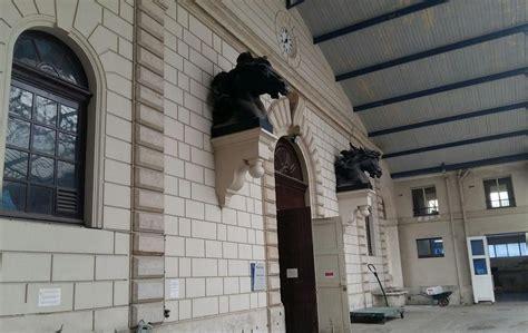 maisons alfort la clinique des chevaux partira en normandie d ici 2020 le parisien