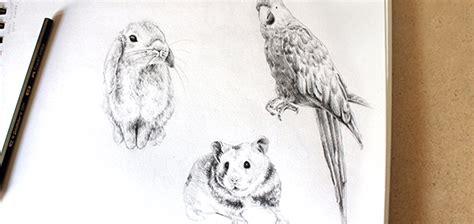 tutorials  drawing realistic animals    eguide