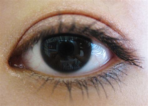 the rarest eye color the rarest eye colors in humans