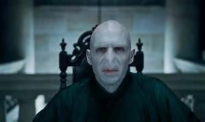 Voldemort - Harry Potter Photo (33972802) - Fanpop